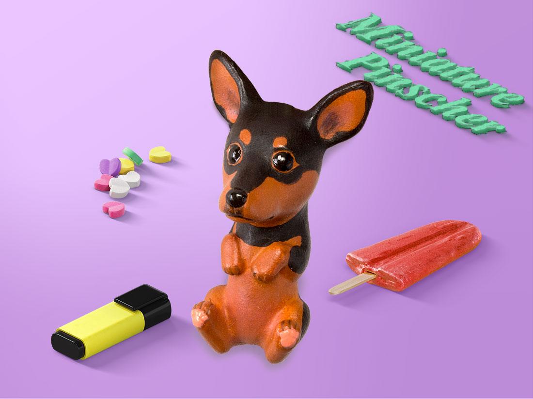 お犬様 vol.2 ミニピン
