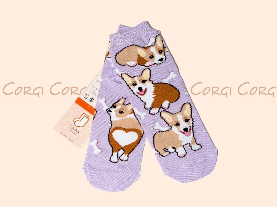 ペットラバーズ商品紹介、一日うきうきするコーギーの靴下