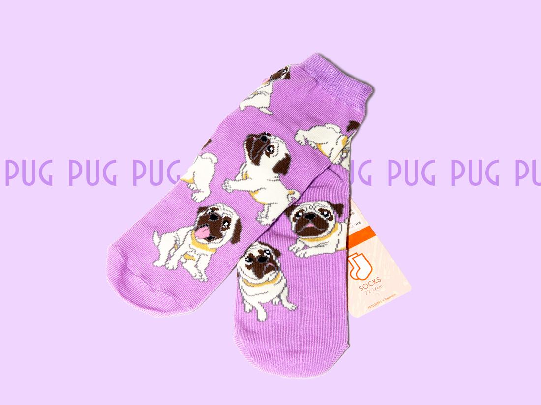 ペットラバーズ商品紹介、一日うきうきするパグの靴下